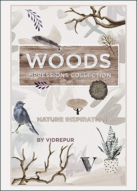 Vi Cc Ed1 Woods B 1 - Catálogos Por Series
